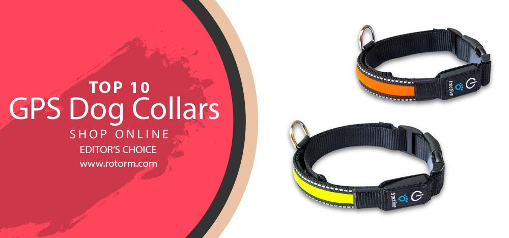Best GPS Dog Collars - Editor's Choice