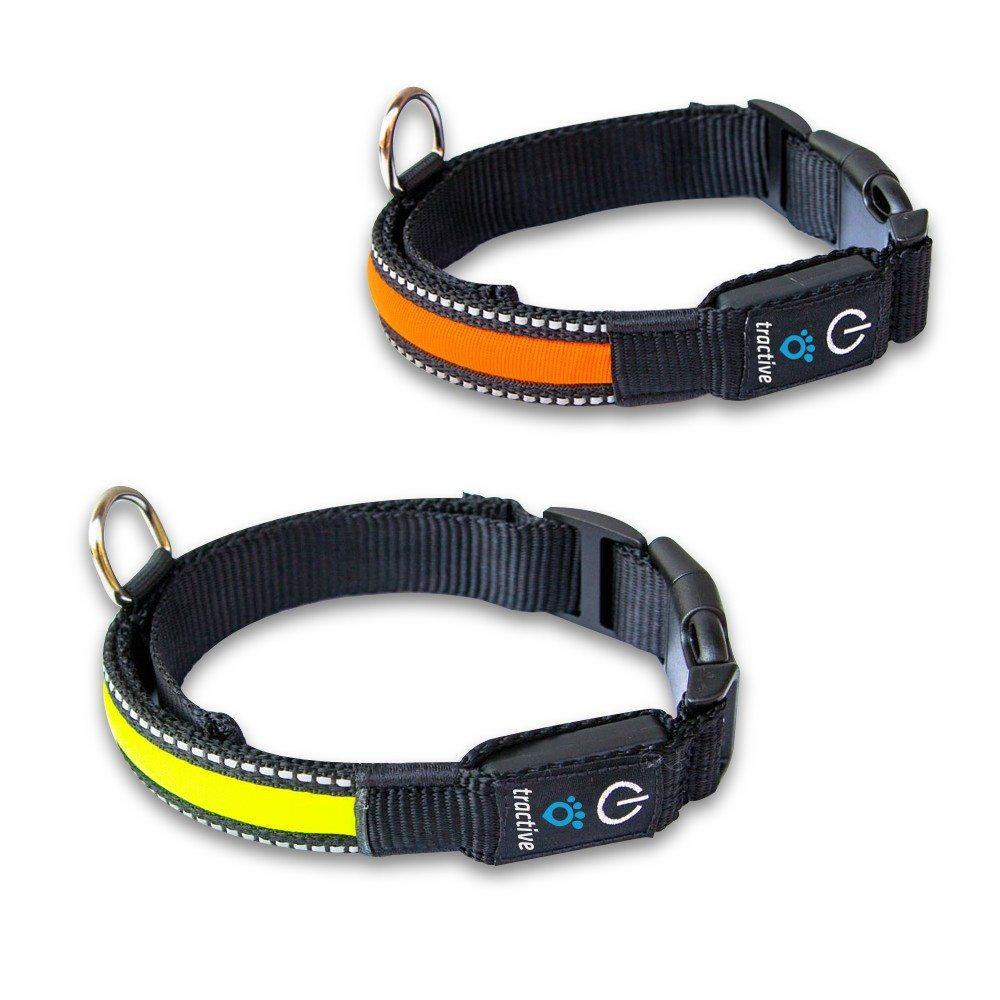 Best GPS Dog Collars 2020