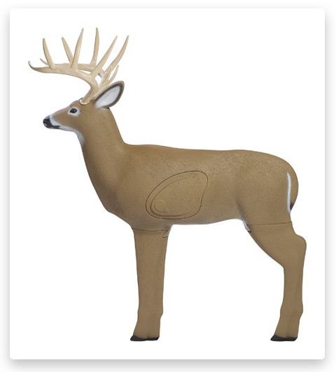 Shooter Buck Target