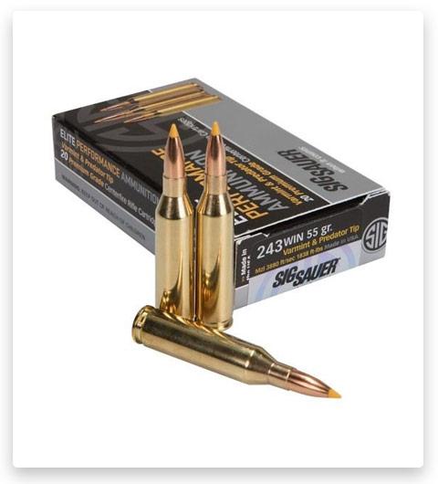 Sig Sauer SIG Hunting Rifle 243 Winchester Ammo 55 grain
