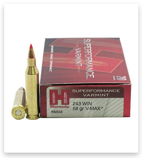 Hornady Superformance 243 Winchester Ammo 58 Grain