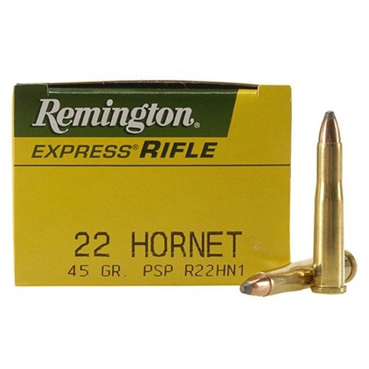 Best 22 Hornet Ammo 2021