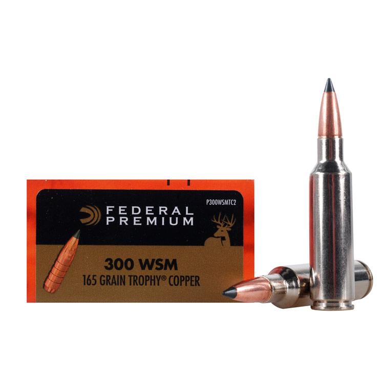 Best 300 WSM Ammo 2021
