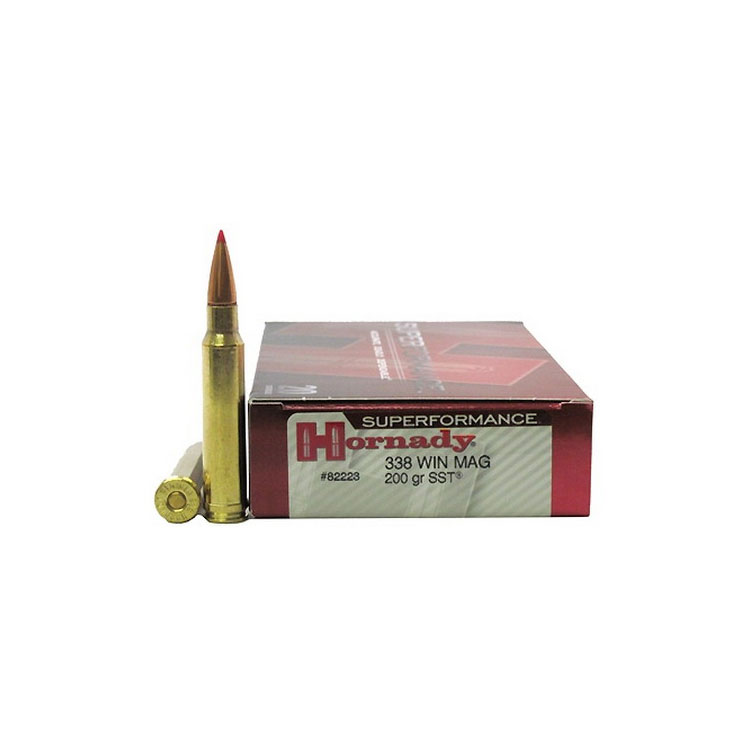 Best 338 Win Mag Ammo 2021