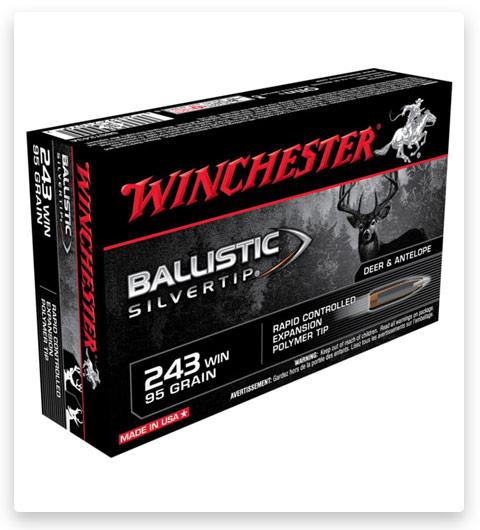 Winchester BALLISTIC SILVERTIP 243 Winchester Ammo 95 grain