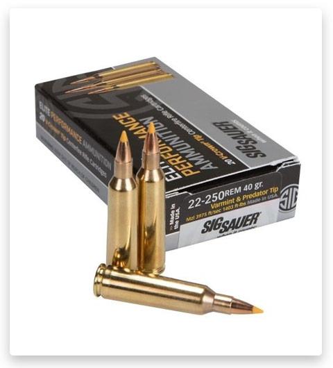 Sig Sauer SIG Hunting Rifle 22-250 Remington Ammo 40 grain