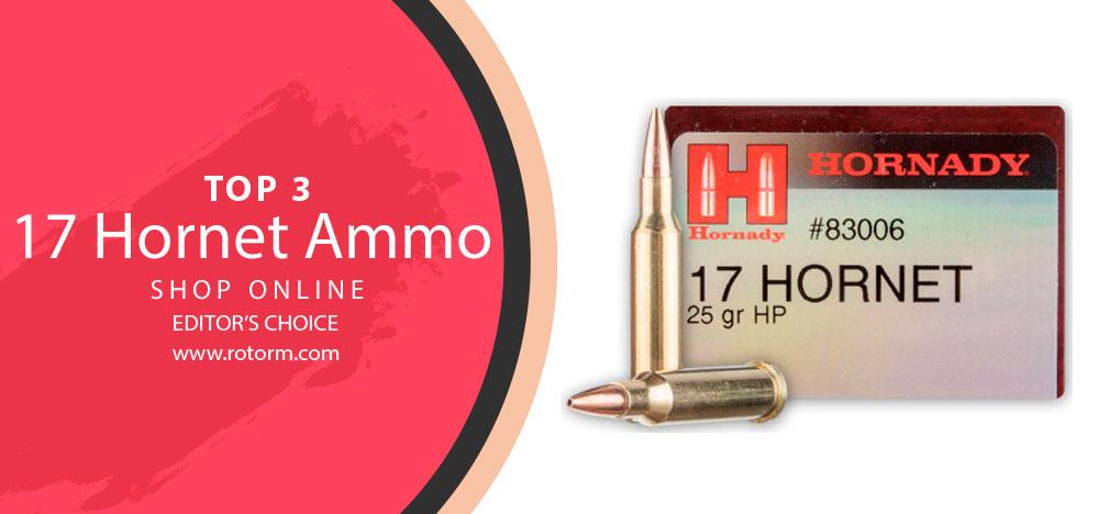 Best 17 Hornet Ammo