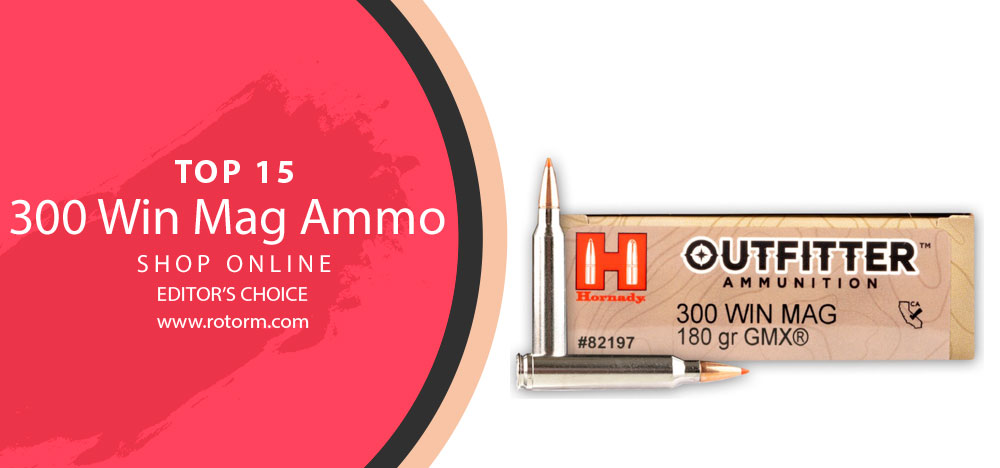 Best 300 Win Mag Ammo - Editor's Choice