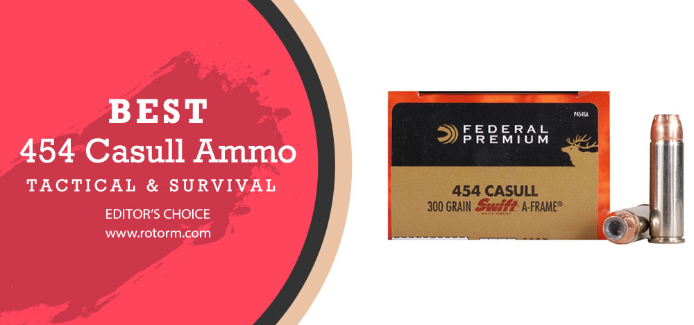 Best 454 Casull Ammo - Editor's Choice