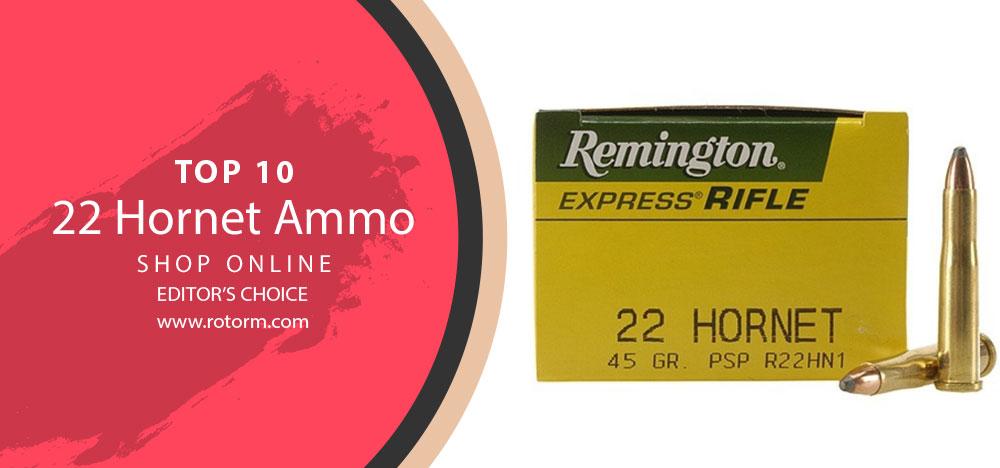 Best 22 Hornet Ammo - Editor's Choice